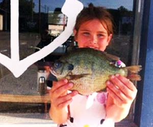 Record sunfish at Lake Texoma on August 6, 2013.  It weighed in at 1.6 lbs. and was 11 inches long.