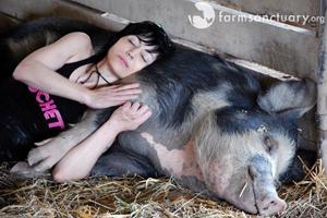 Jett sleeping with pig
