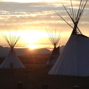 NativeHomes