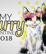 "StreetCats hold ""My Furry Valentine"""