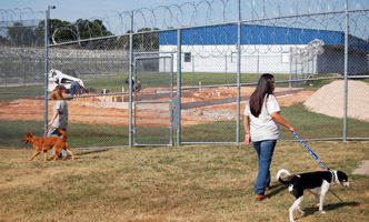Offenders participating in the Guardian Angels program at Mabel Bassett walking dogs as construction continues on the Serelda Cody Training Center.